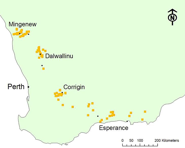 Grain survey collection sites