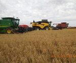 Machines plowing field