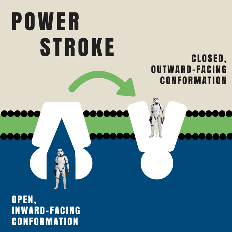 Power stroke ABCB graphic