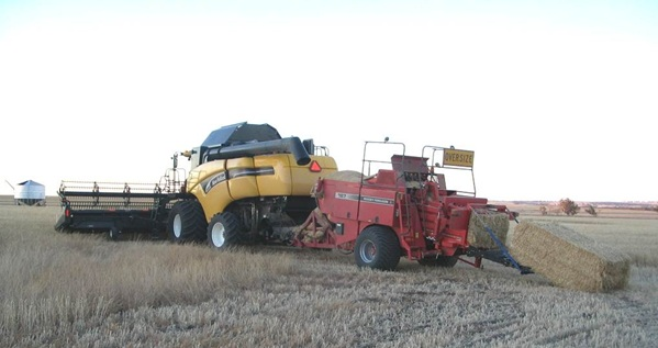 Bale system collecting and baling chaff