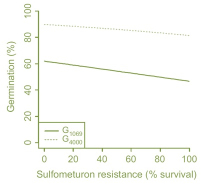 graphs showing relationship between dormancy characteristics and resistance to the herbicide sulfometuron methyl