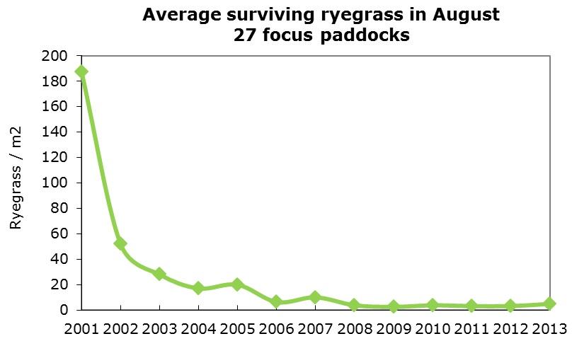 Graph average surviving ryegrass in august
