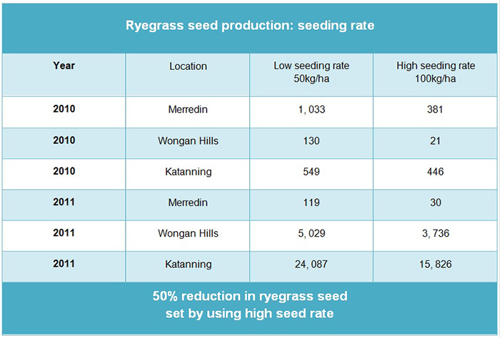Table about ryegrass seed production