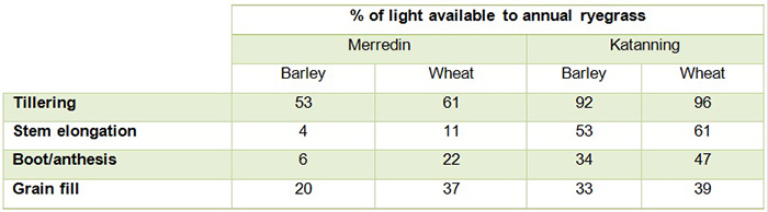 Table of percentage of light available to the annual ryegrass canopy
