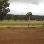 Farm paddock