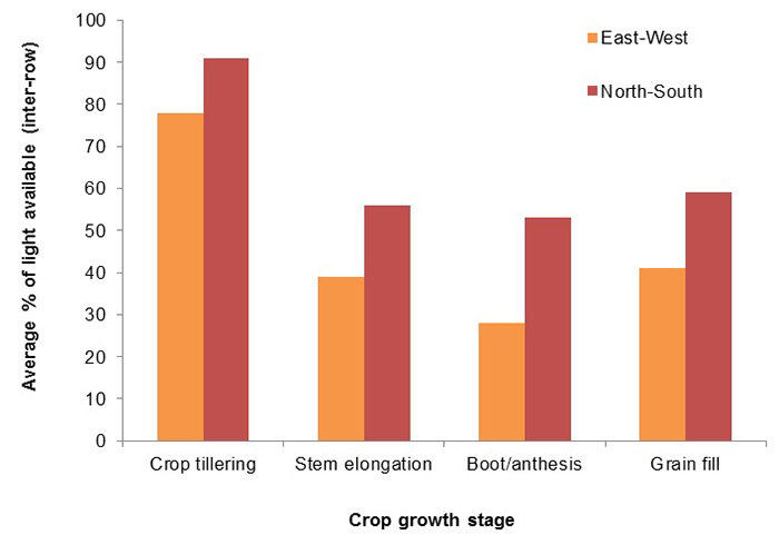 Barchart showing crop growth based on average light available