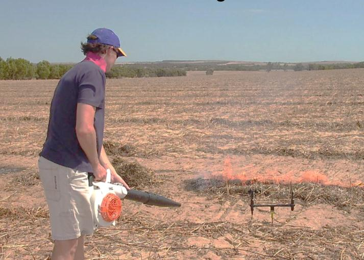 Peter Newman simulating strong wind during windrow burning research