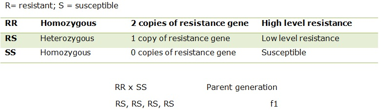 Table showing plants resistance through genes