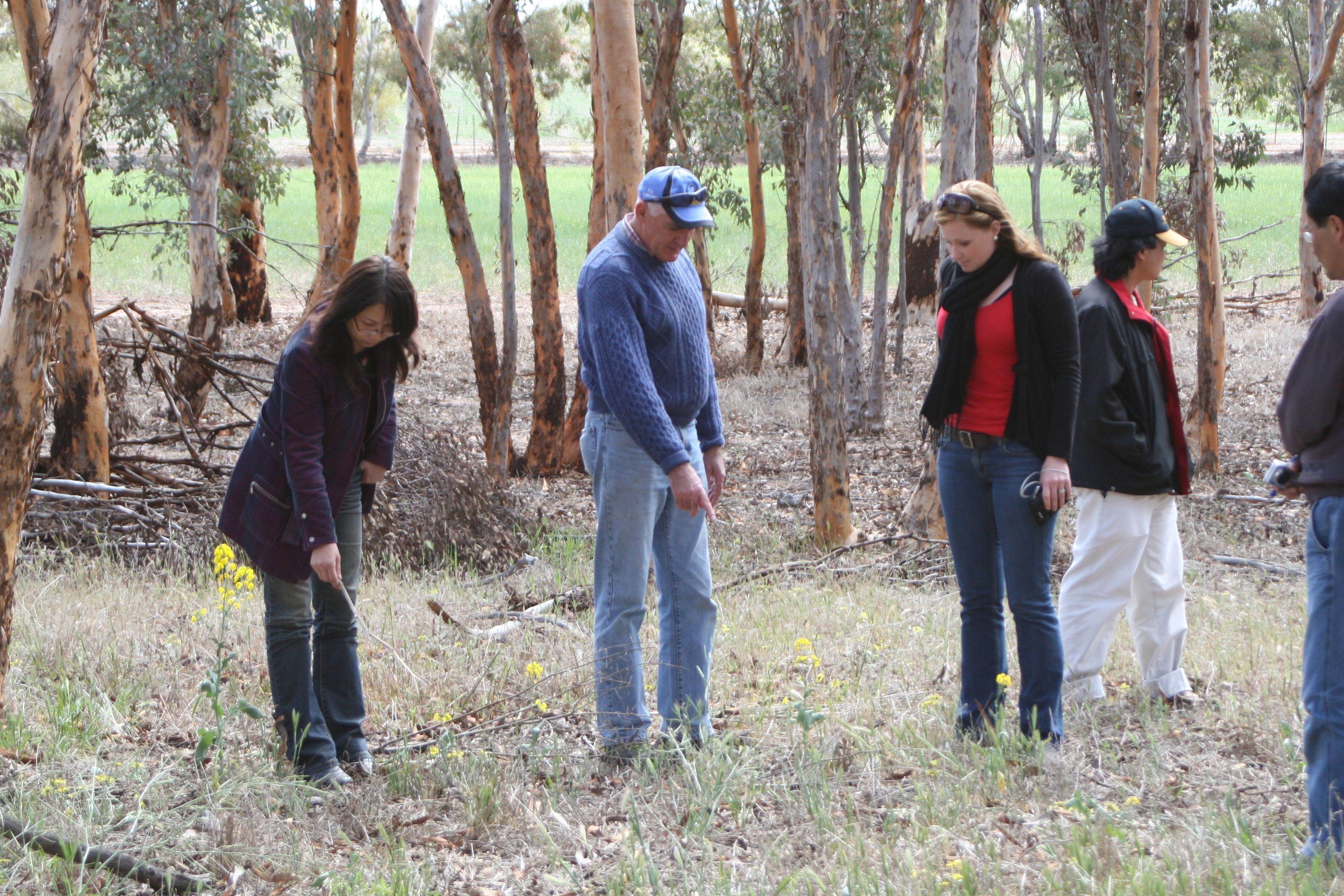 Professor Steve Powles and AHRI staff Qin Yu, Neree Martinez and Heping Han inspect the site