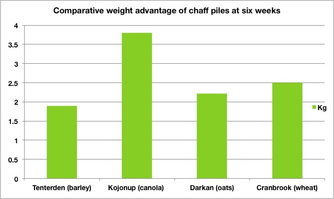 comparative-weight-advantage-of-chaff-piles-at-six-weeks