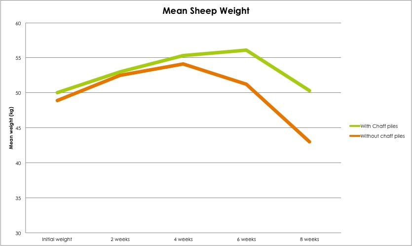 mean-sheep-weight-kojonup
